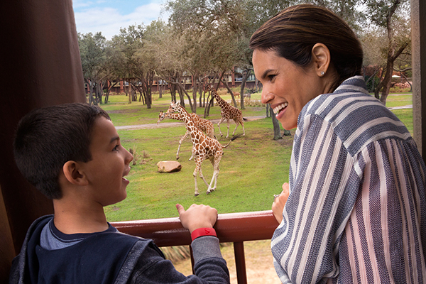 A mom and son smile together as giraffes play outside their window at Disney's Animal Kingdom Lodge