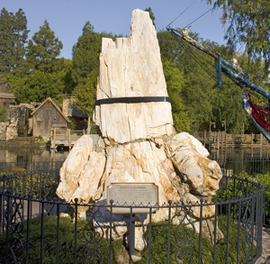Petrified Tree at Disneyland Park