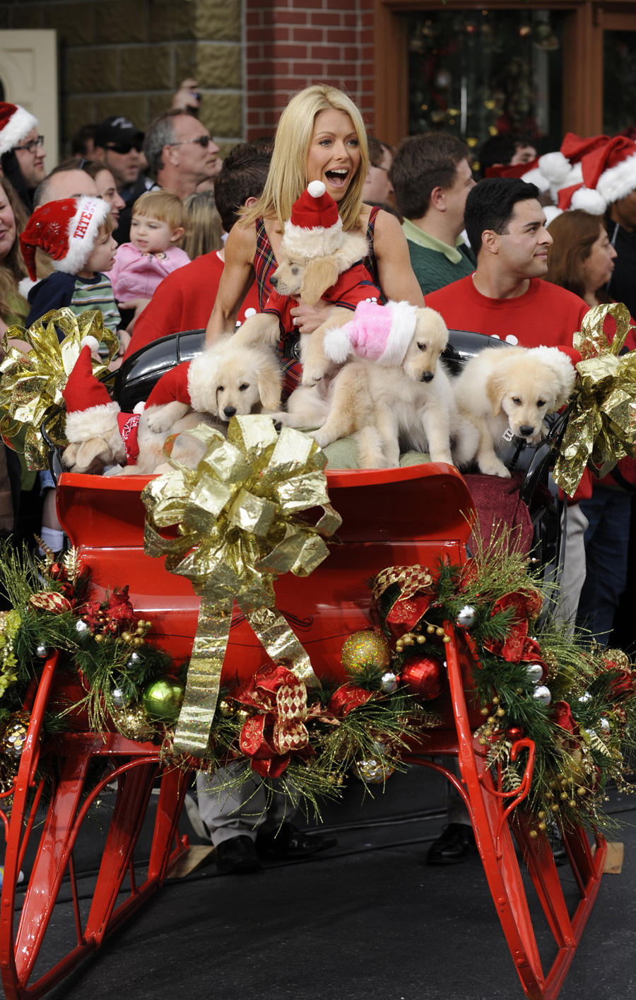 disney parks christmas day parade airs december 25 disney parks blog. Black Bedroom Furniture Sets. Home Design Ideas