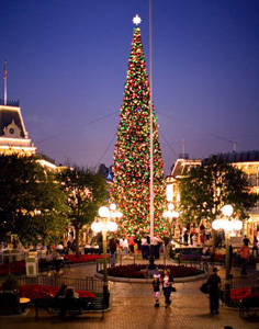 Christmas Tree on Main Street, U.S.A.