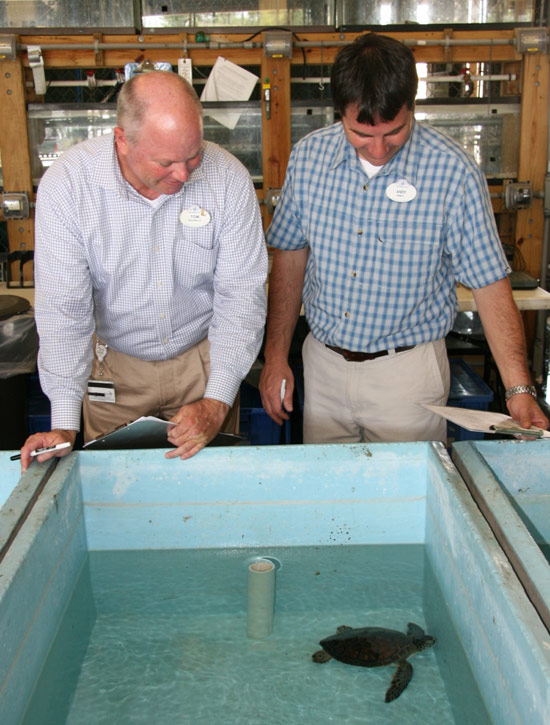 Disney's Animal Programs research scientist and veterinarian
