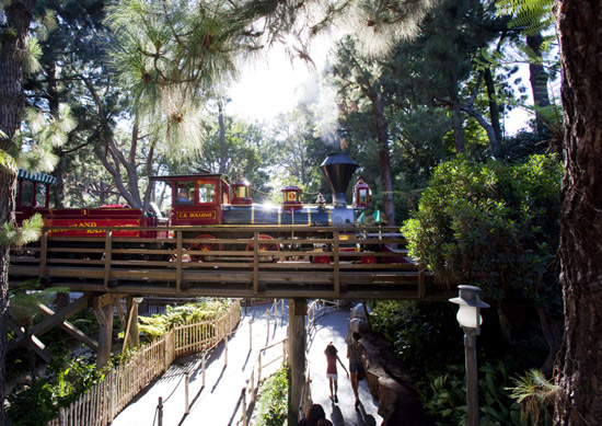 Train Passing Through Critter Country, By: Paul Hiffmeyer