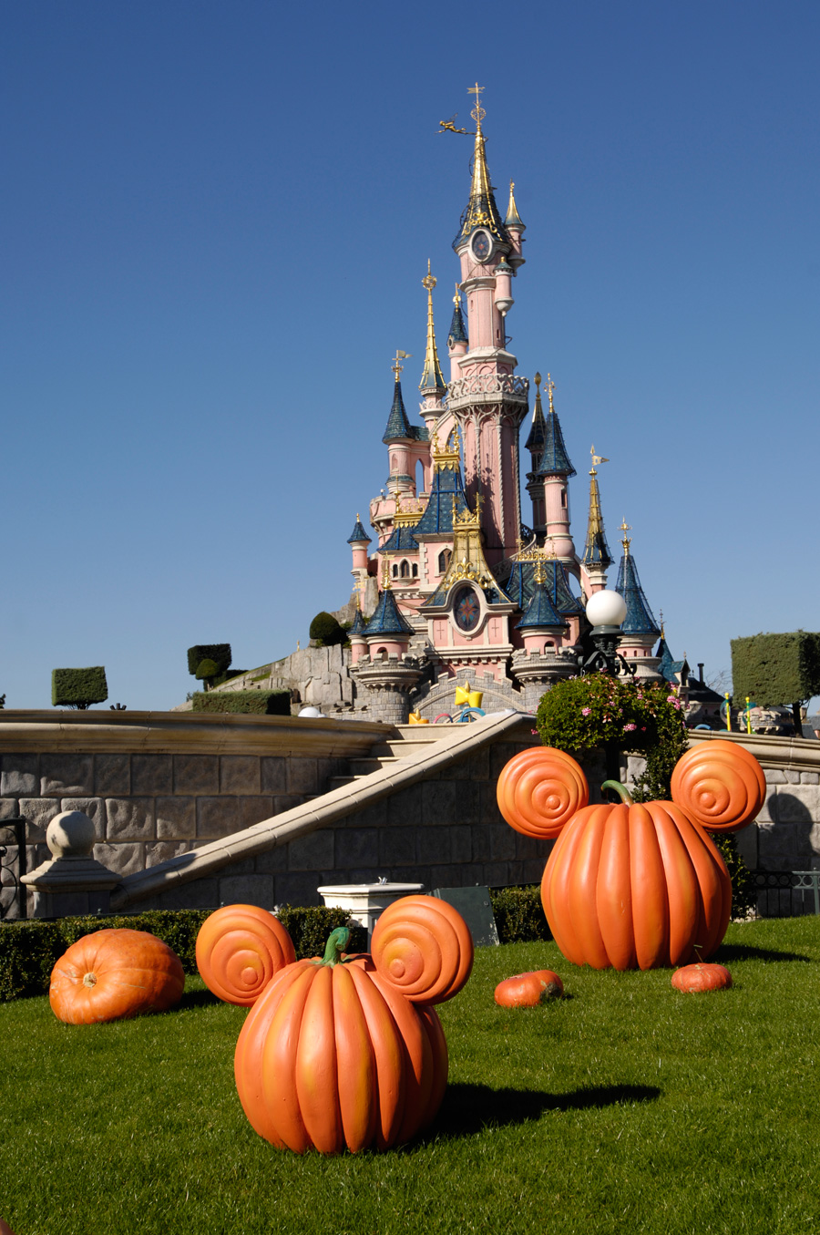 A View from…Disneyland Paris | Disney Parks Blog