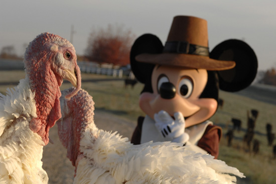 Happy Thanksgiving from Disney Parks