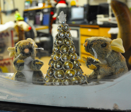 Woodrat Plush Animals Decked Out for the Holidays at the Wildlife Tracking Center
