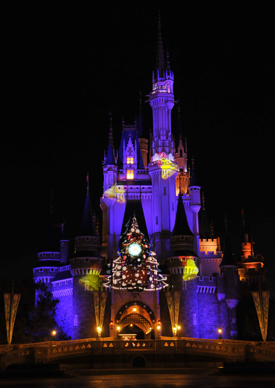 Cinderella Castle Decked Out for Christmas at Tokyo Disneyland