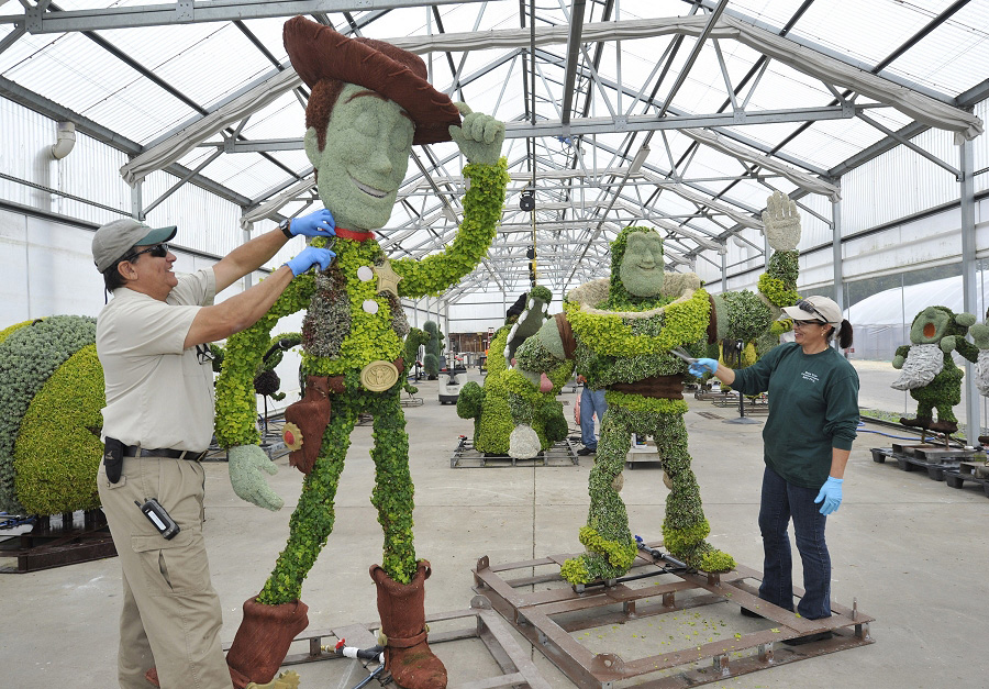 Superb Disney Topiary Part - 8: Woody And Buzz Lightyear Topiaries At The 18th Epcot International Flower U0026  Garden Festival