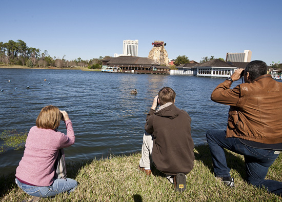 Guests Participate in the First Annual Holiday Bird Count at Walt Disney World Resort