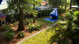 Sneak Peek: 'My Yard Goes Disney' - After