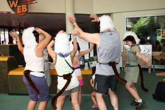 Wildlife Wednesdays: Do the Cotton-Top Tamarin Dance at Disney's Animal Kingdom