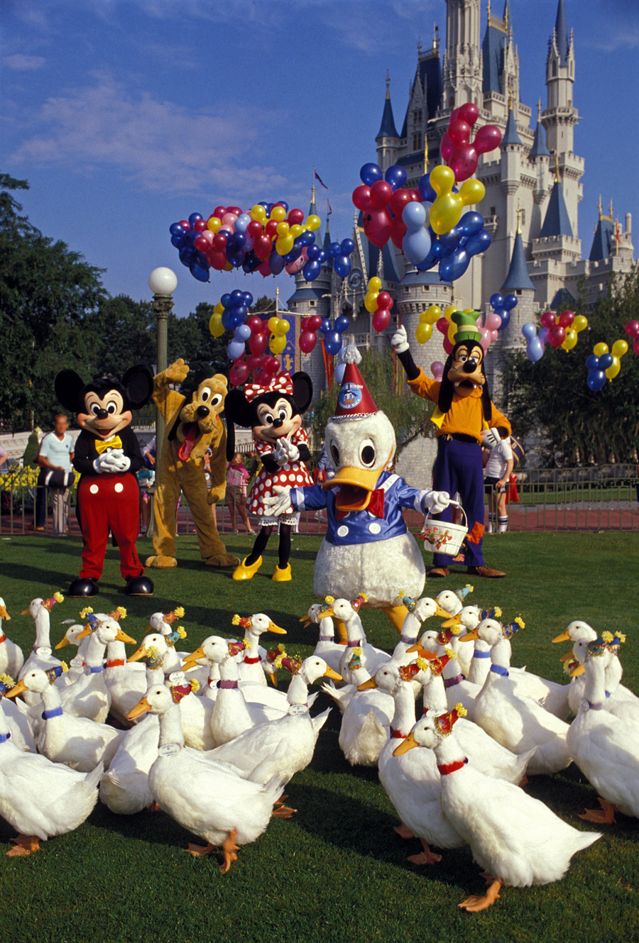 Caption This A Party Thats Just Ducky at Walt Disney World Resort