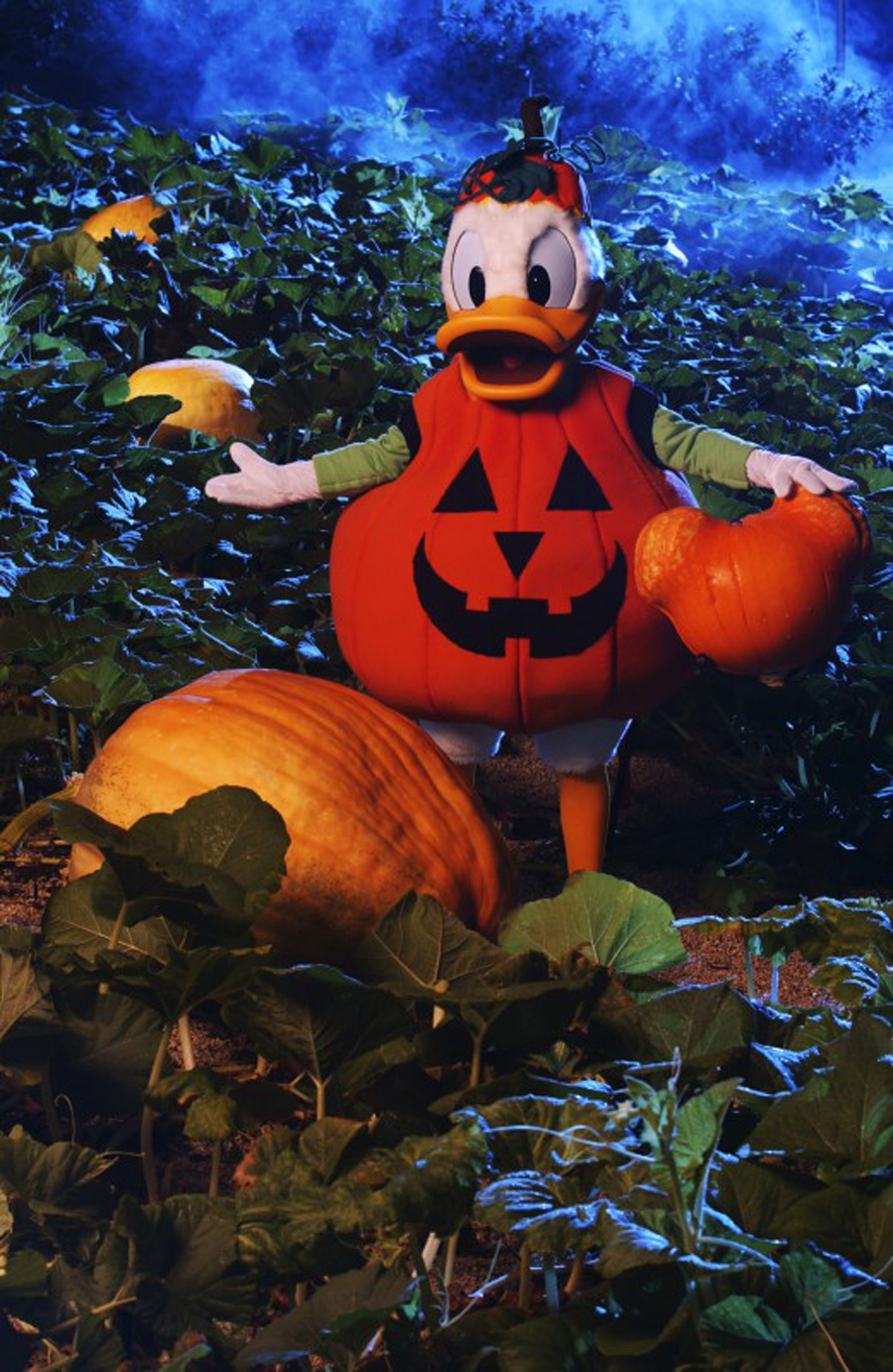 Spend Halloween at Fort Wilderness With Disney Characters   Disney ...