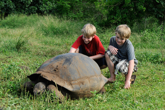 Meet the Galapagos Tortoise While Exploring the Galapagos Islands with Adventures by Disney