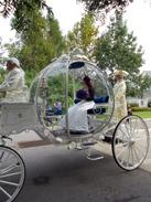 A Halloween Wedding at Walt Disney World