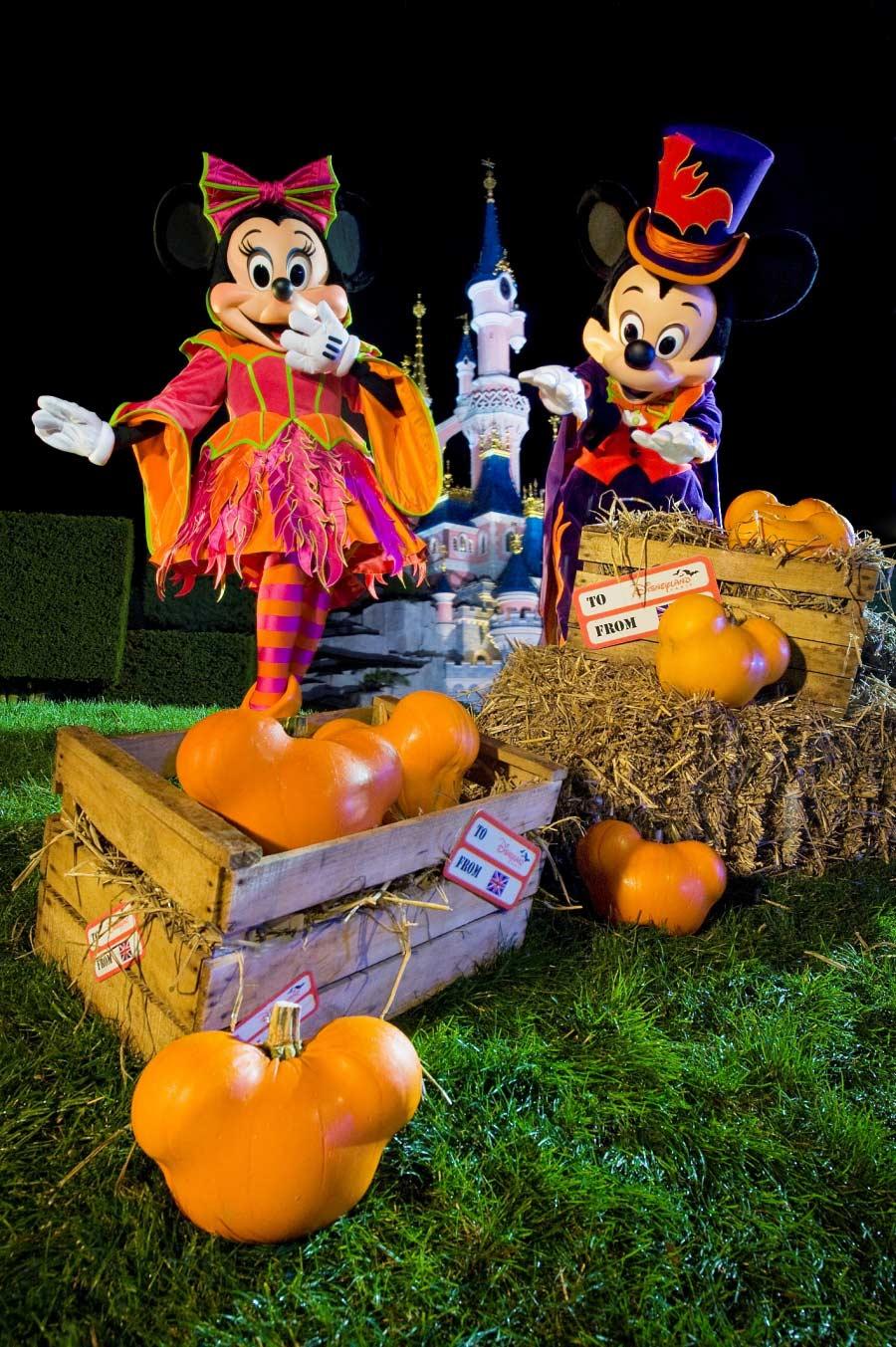 Behind the Scenes: Mickey Pumpkin Magic at Disneyland Paris ...