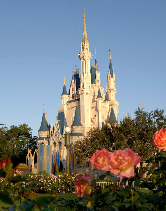 Roses Growing in Front of Cinderella Castle at Magic Kingdom Park