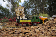 A Miniature Train in the Morales Family's Backyard - 'My Yard Goes Disney'