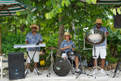 The Calypso Band Tropicals Perform Caribbean Steel Drum Music at Disney's Typhoon Lagoon Water Park at Walt Disney World Resort
