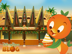 Desktop Wallpaper Featuring Orange Bird in Adventureland at Magic Kingdom Park at Walt Disney World Resort
