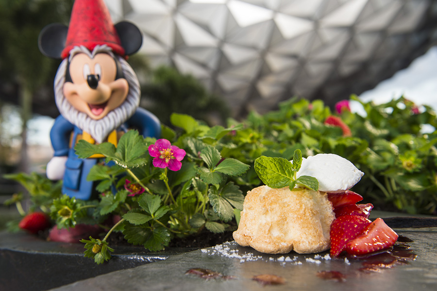 TRYit Tastes for Kids at the Epcot International Flower Garden