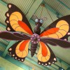 Butterflies And Other Playful Animals Fill the Sky Inside Island Mercantile at Disney's Animal Kingdom Theme Park
