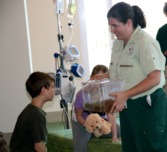 Fun Abounds When Kids, Cast Members and Animals Connect During Hospital Visits