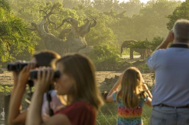 Wild Africa Trek: Explore a Different Side of Disney's Animal Kingdom