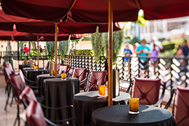 New Lounge at The Hollywood Brown Derby Debuts at Disney's Hollywood Studios