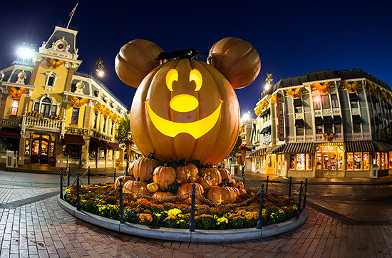 Mickey Mouse Pumpkin at Disneyland Park