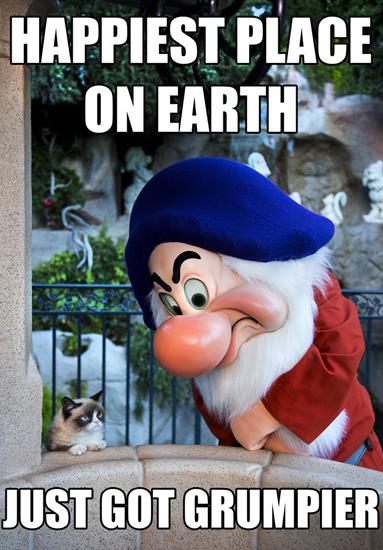 Social Media All-Star Grumpy Cat Shows Her Disney Side at Disneyland Park