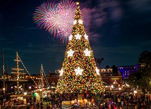 Christmas Trees at Disney Parks