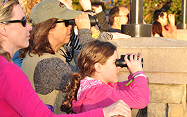 Wildlife Wednesdays: Guests Join 4th Annual Walt Disney World Resort Holiday Bird Count—Record Number of Birds Counted