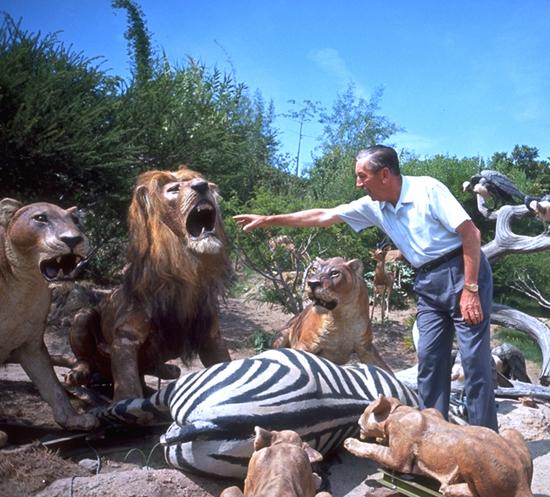 Walt in Jungle 2