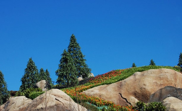 All in the Details: The Changing Terrain of Seven Dwarfs Mine Train