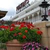 Spring Blooms Bright at Downtown Disney at Walt Disney World Resort