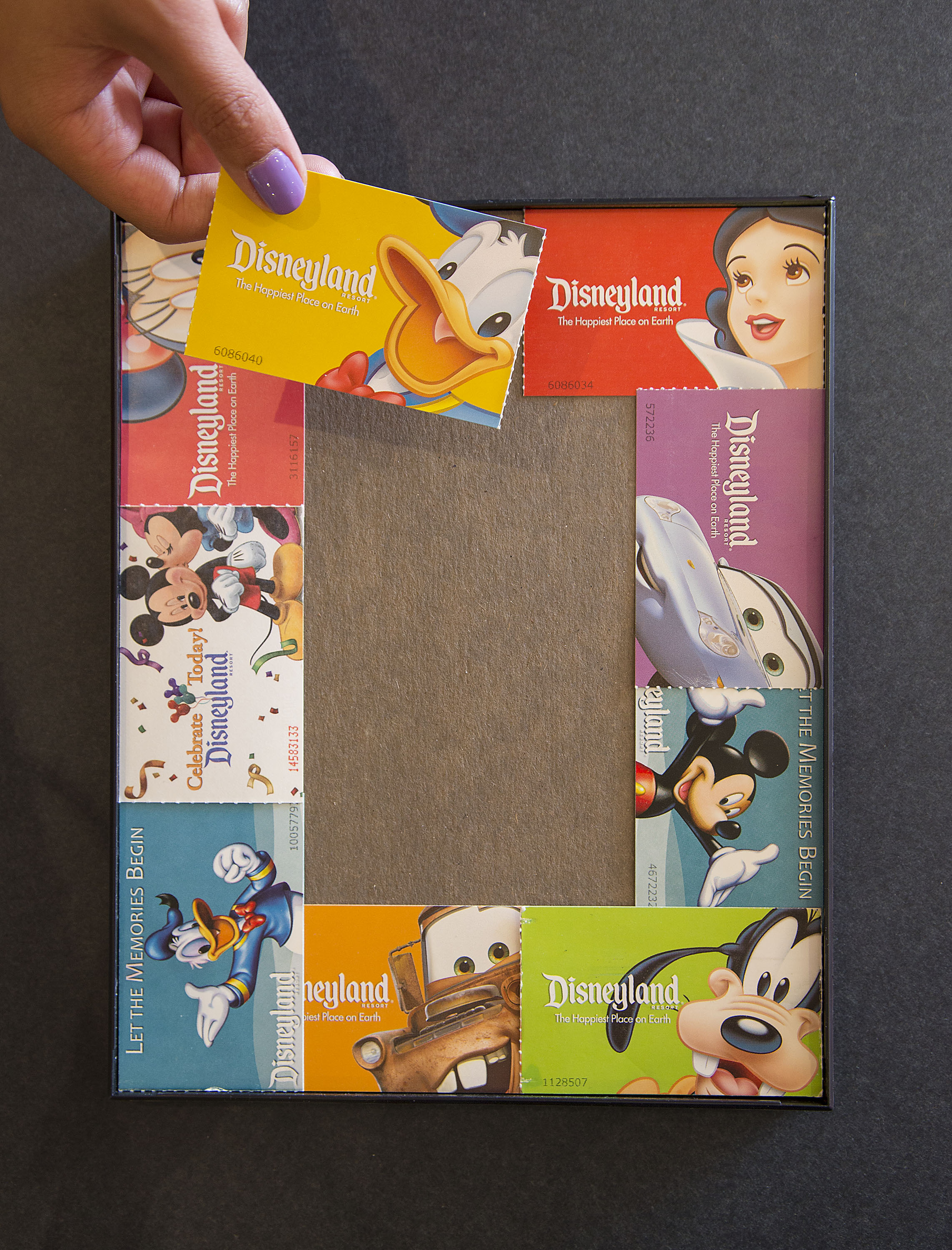 Show Your DIY Disney Side: Disney Parks Guide Map Photo Mat | Disney ...