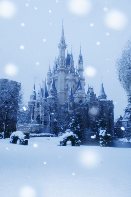 Photo Gallery Disney Castles That Have Been Covered In