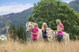 Visit Iconic Fjord Horses in Olden with Disney Cruise Line