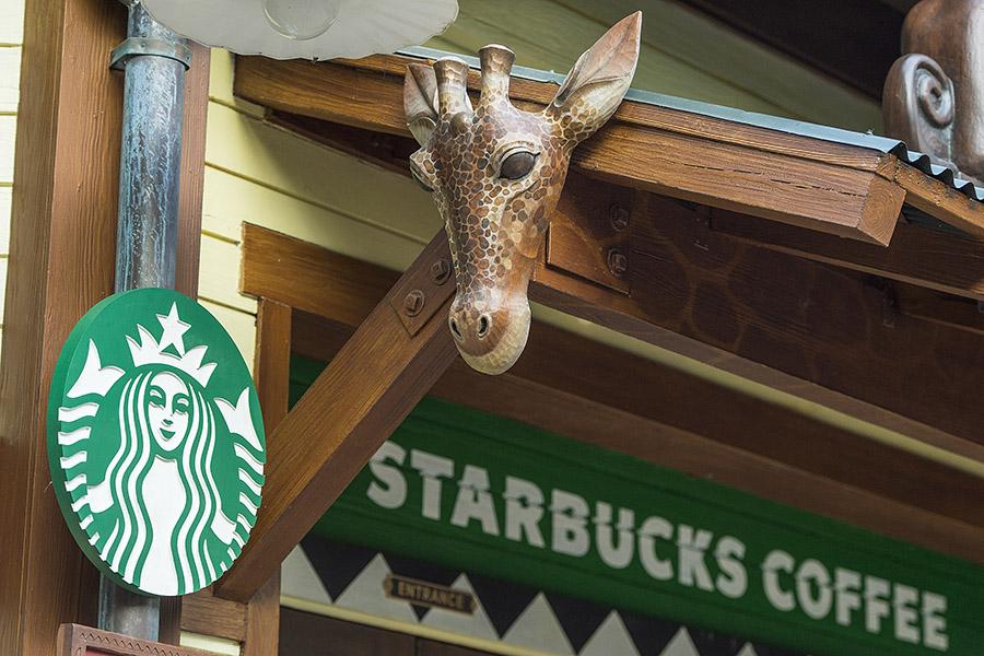 Disneys Animal Kingdoms Starbucks Opens Flat White Lattes To Help