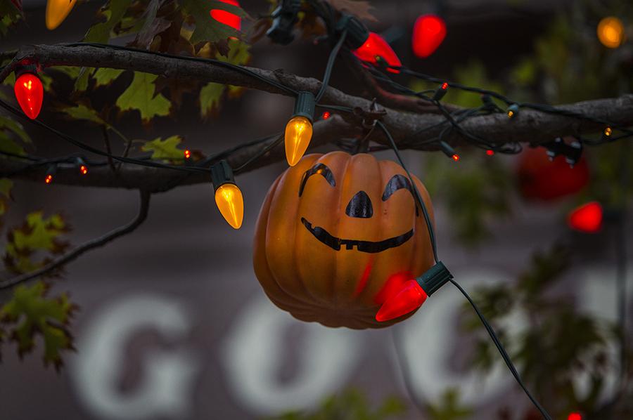 Disney Parks After Dark: The Halloween Tree at Disneyland Park ...