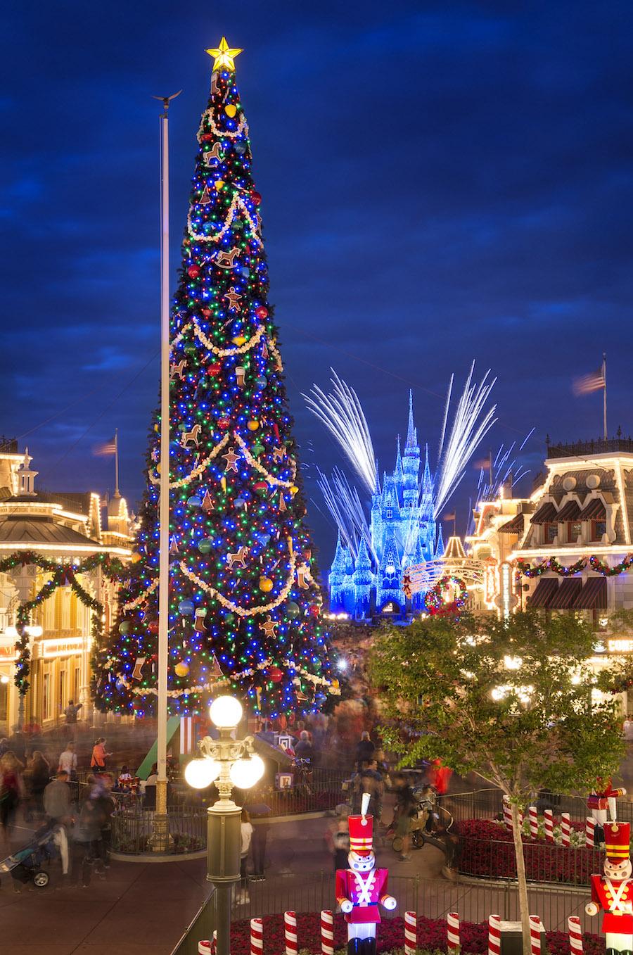 christmas tree at magic kingdom park - Disney Christmas Trees