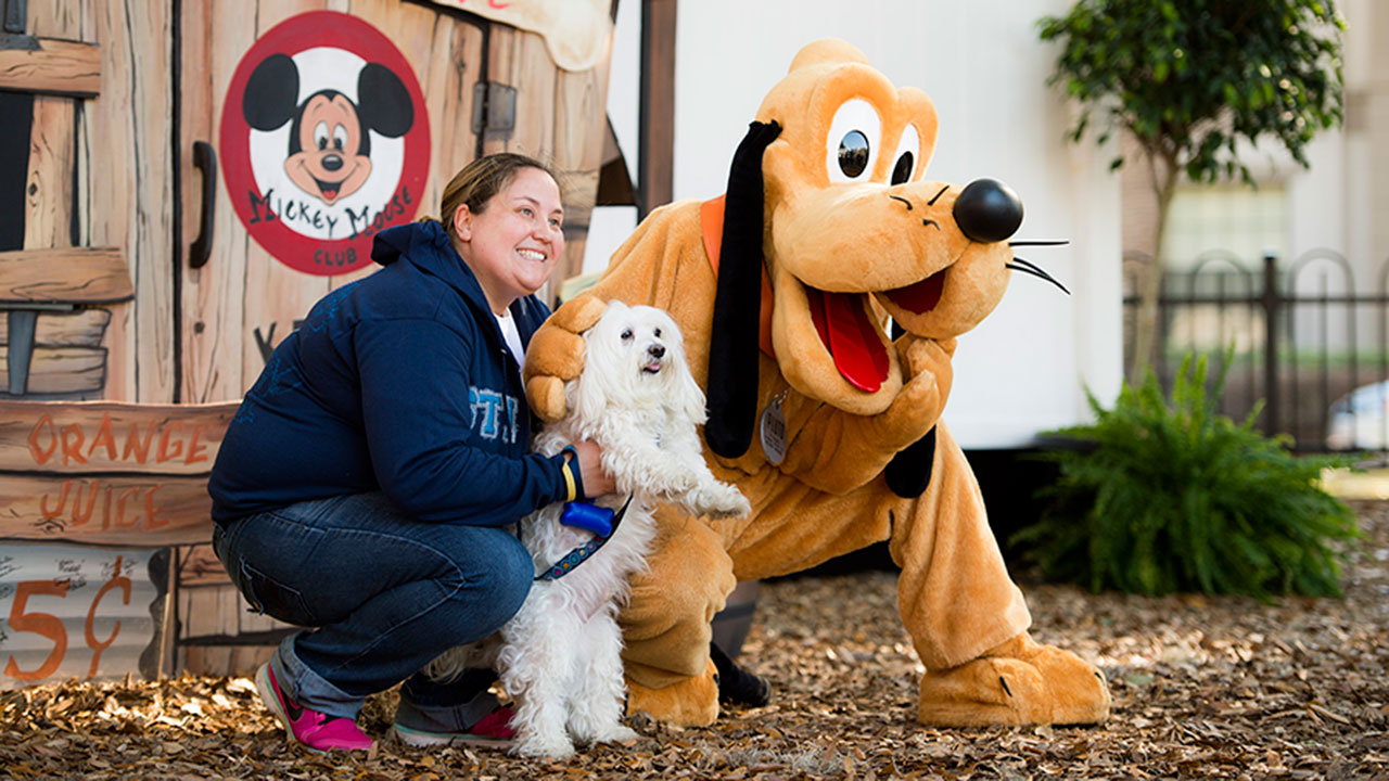 Walt disney world dogs pack shows its love of paws for Pet boarding near disney world