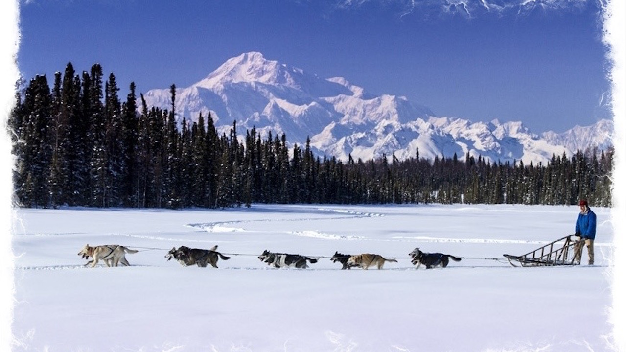 Go dog sledding in Alaska with Adventures by Disney