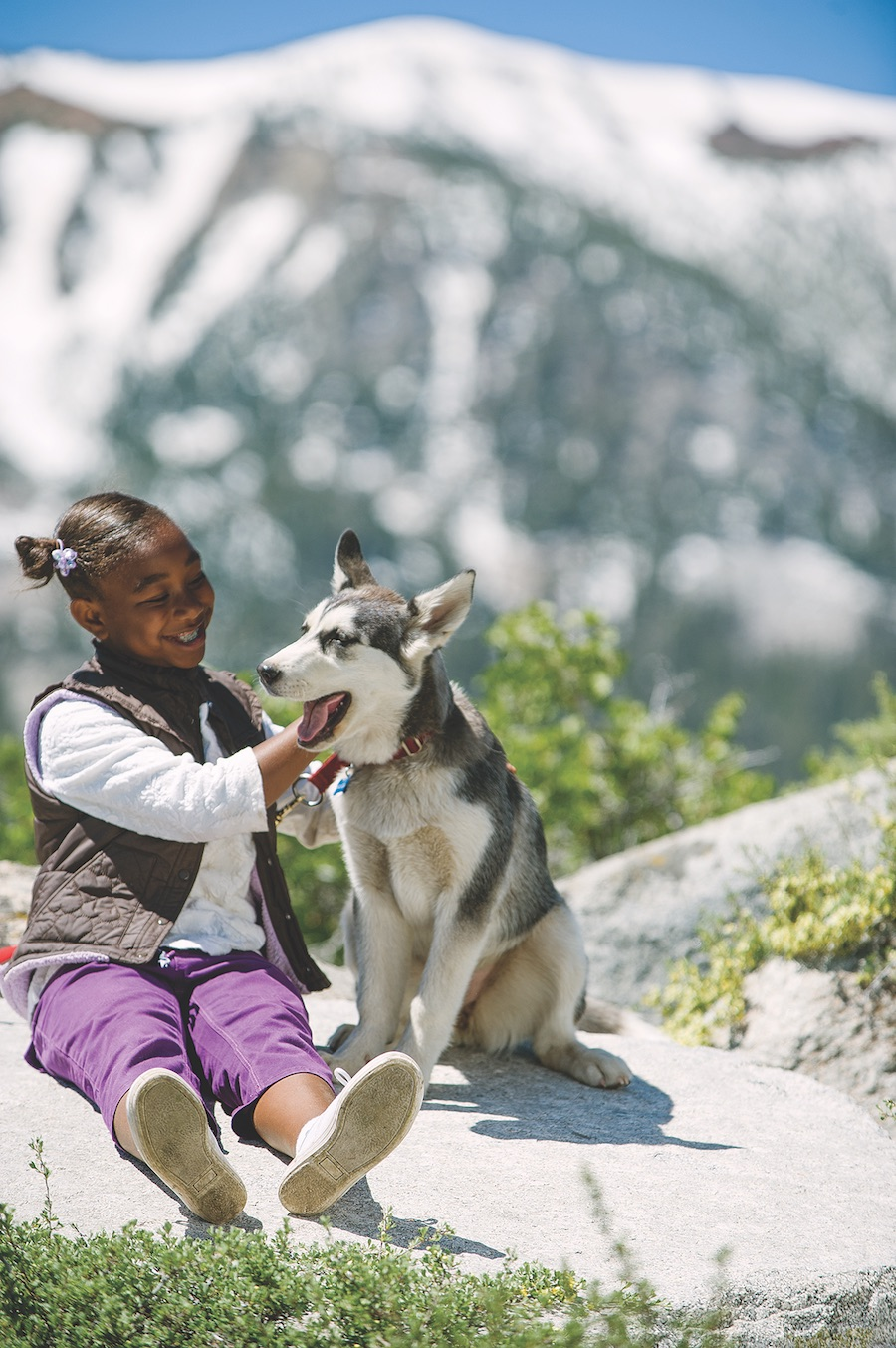 Get up close with a Husky on the Adventures by Disney Alaska vacation