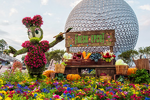 Daisy Duck Topiary at the Epcot Flower and Garden Festival at Walt Disney World Resort