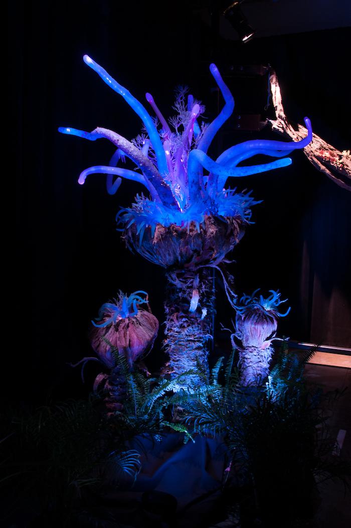 Bioluminescent Flora Details Coming To Pandora The World Of AVATAR At Disneys Animal Kingdom