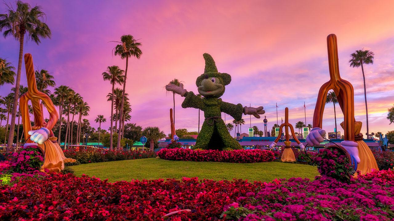 Disney Parks After Dark: Mickey Topiary at Disney's Hollywood Studios