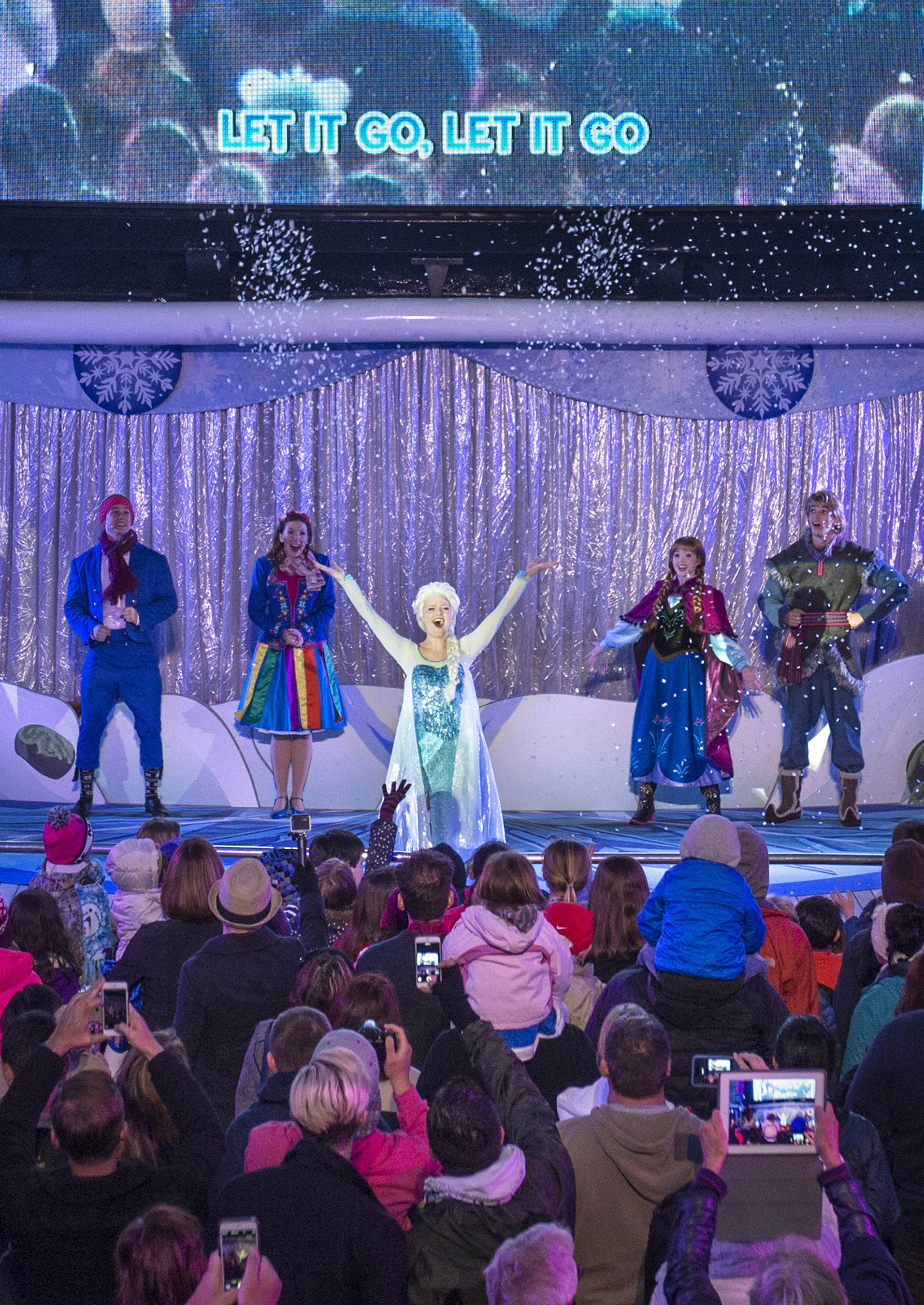"""Freezing the Night Away with Anna, Elsa and Friends"" Deck Party"