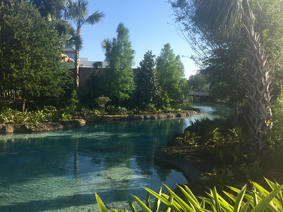 The Spring at Disney Springs