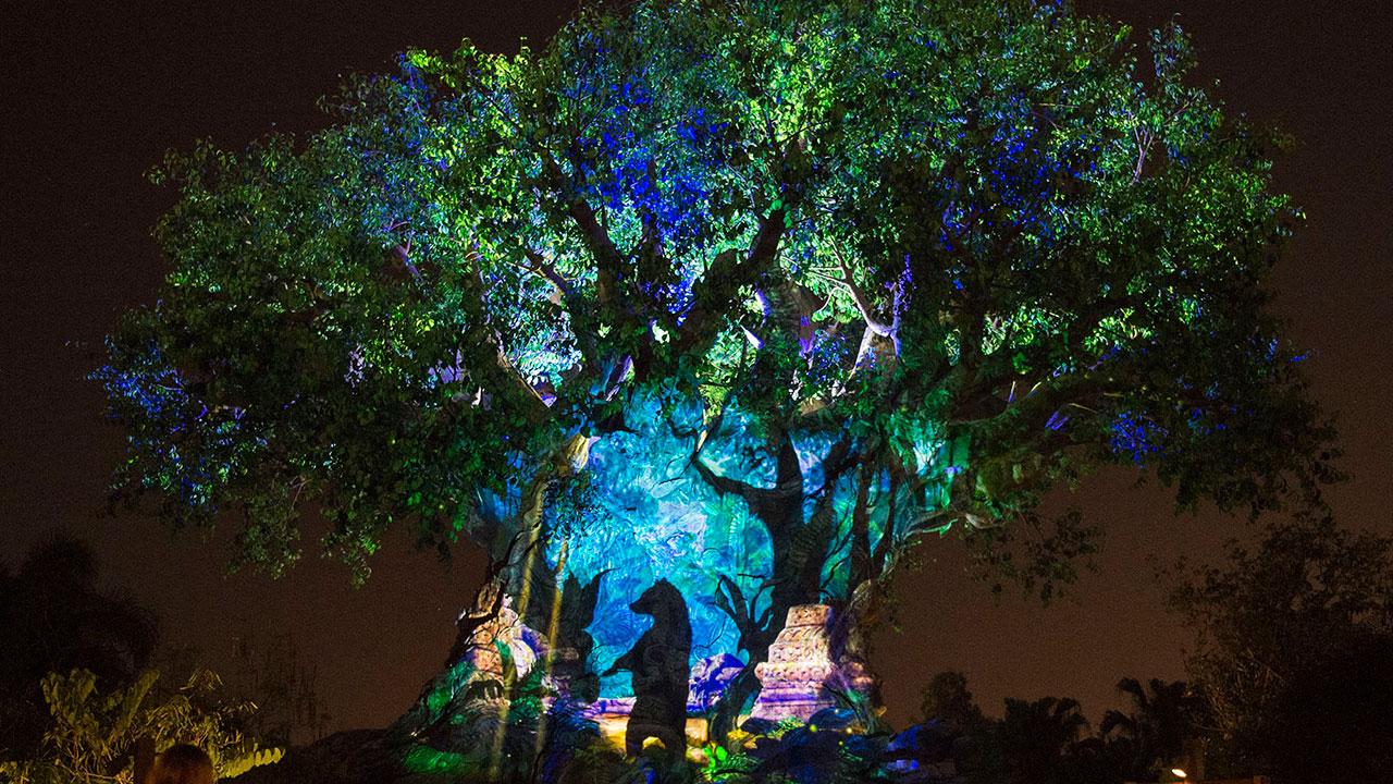 Get Ready to #AwakenSummer at Walt Disney World Resort This Memorial Day Weekend